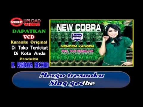 Mendem Kangen - Vivi Rosalita - New Cobra [ Official ]