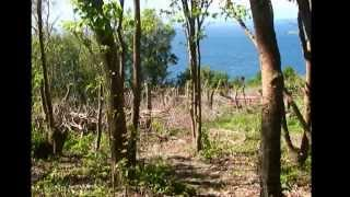 Dominica Hiking - Backpacking Dominica Hiking Caribbean Tours