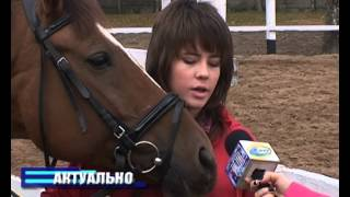 В Борисове развивается конный спорт 13 10 22
