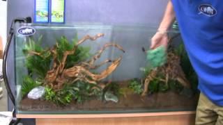 Mise en eau, installation d'un aquarium