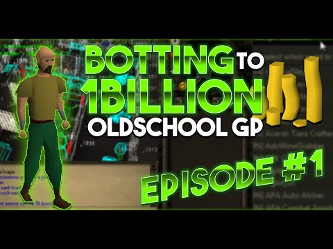 Runescape Botting From Scratch To 1B 07 Episode 1