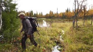 Backpacking in Swedish Lapland - Dellikälven