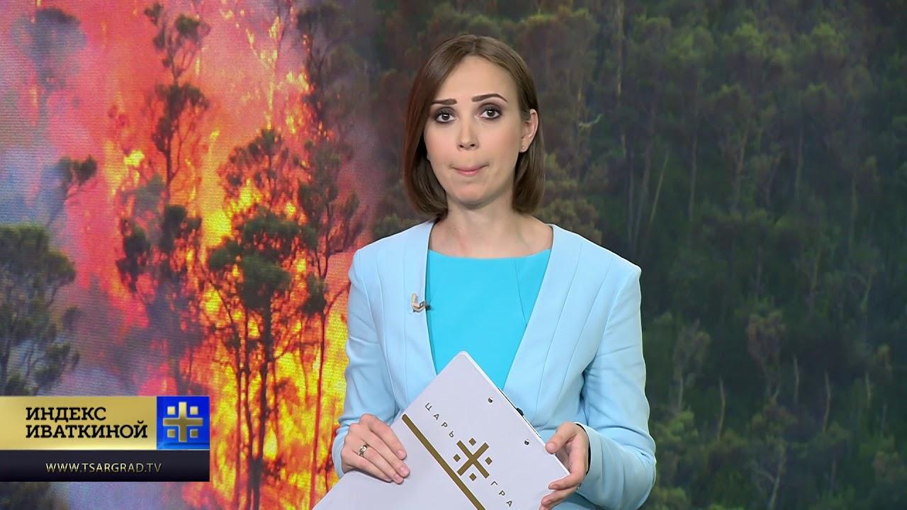 Полыхающая Россия: почему горят леса?