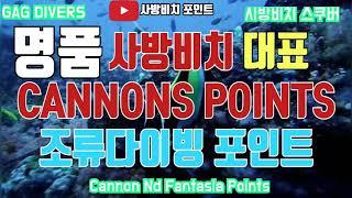 사방비치 다이빙 포인트 캐논 조류다이빙
