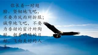 Publication Date: 2019-10-04 | Video Title: 新山圣若瑟华文小学2017年度毕业生影片
