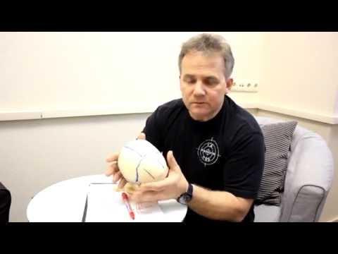 Эпилепсия: лечение, какой врач лечит. Можно ли вылечить