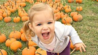 🎃Best Pumpkin Patch🎃