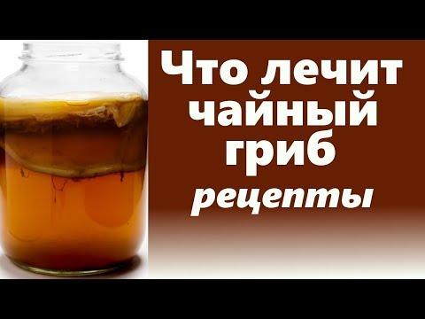 Польза чайного гриба.  Рецепты применения чайного гриба