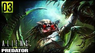 Aliens VS Predator 2 | ALIEN VS PREDATOR (Alien Campaign Part 3)