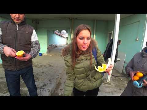 #Узбекистан#Обзор Лимонария#Едим нохат с Мясом#Uzbekistan#Overview Limonaria#Eat Nohat with Meat#
