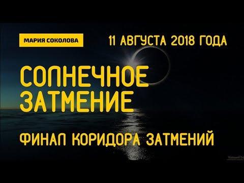 11 августа 2018 - ФИНАЛ