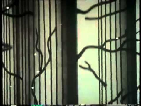 4 of 6 The Real Thing 1980 James Burke