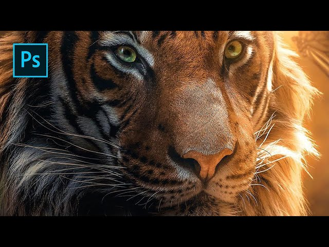 Tiger & Butterfly - Photoshop Manipulation Tutorial
