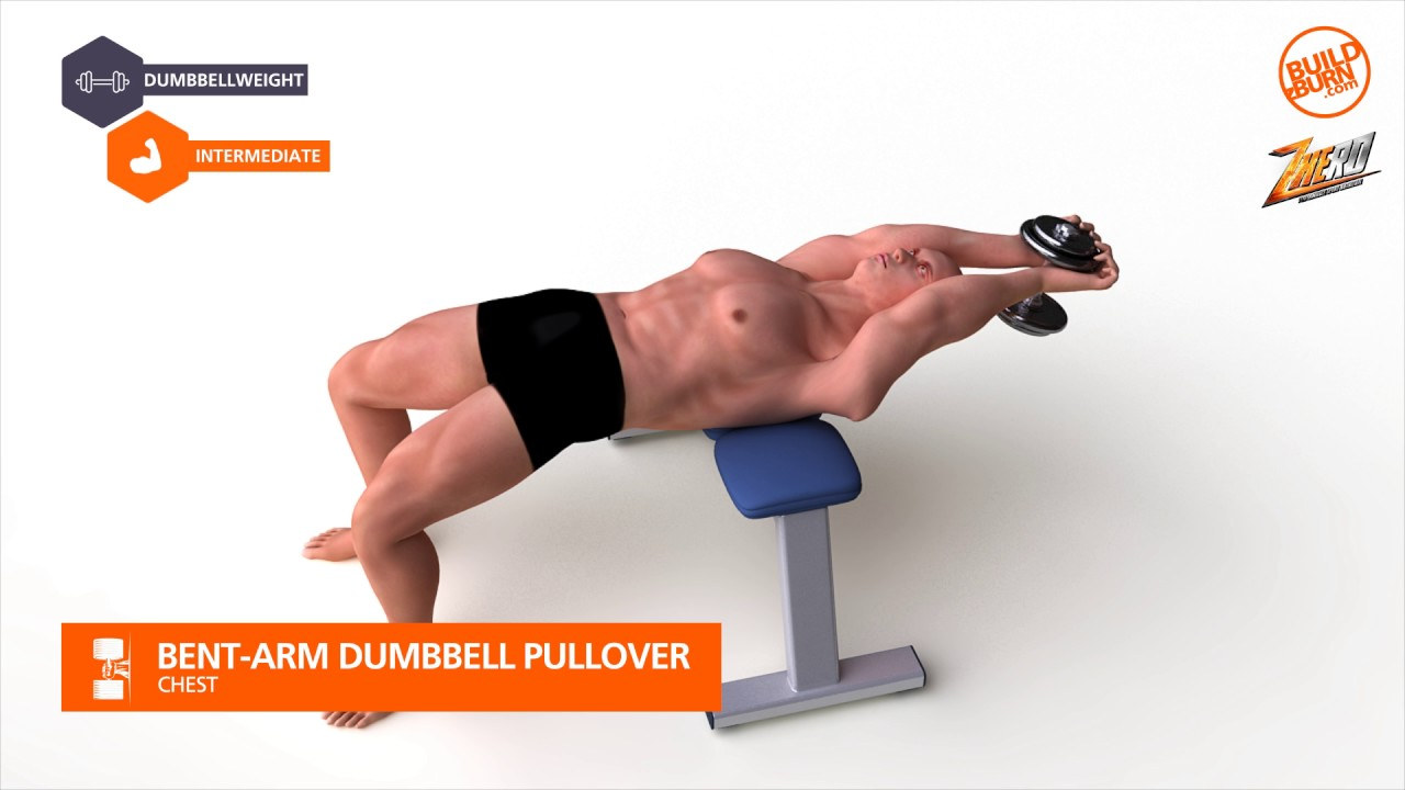 Chest Bent Arm Dumbbell Pullover - YouTube