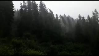 Sturm in Weissbriach (Gitschtal, Kärnten, Österreich) - ca. 140 km/h - 10.8.2017