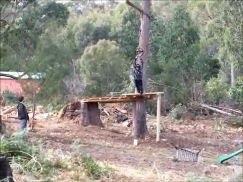 Merveilleux Backyard Flying Fox Making The Breaking And The Remaking.wmv   YouTube