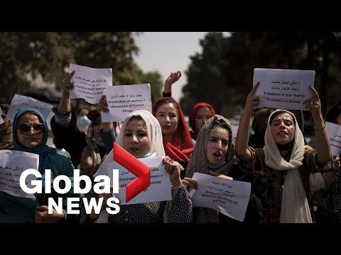 Afghanistan crisis: Women fear losing their careers under Taliban