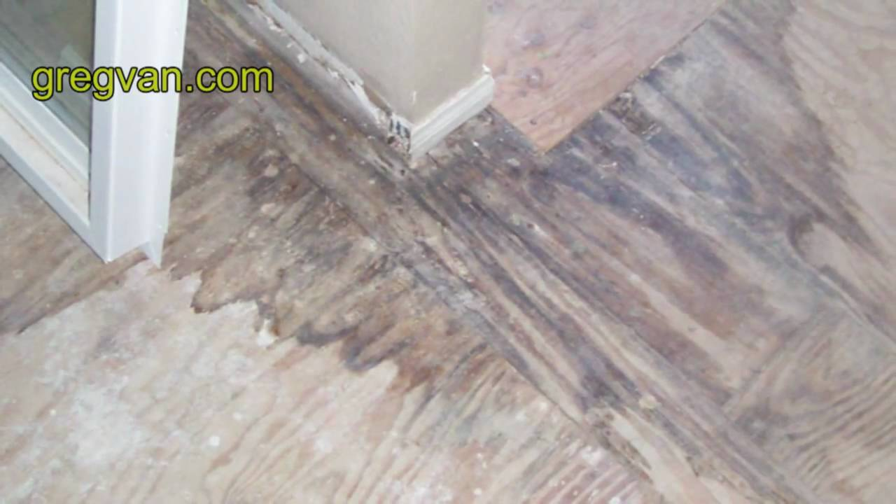 Plywood Water Stains from Water Leaks  Bathtub Tile