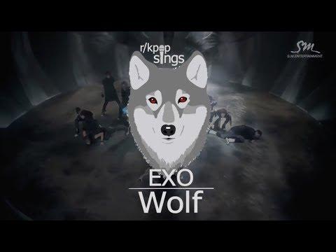 r/kpop sings - '촉이 와 (EXO - Wolf)' MV