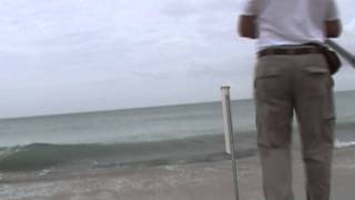 Surf Fishing Video in the Atlantic Ocean on  Species  by WillCFish Tips and Tricks.