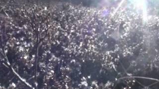 Ólöf Arnalds - Innundir Skinni (Official Video)