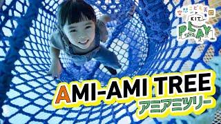 Gambar cover アミアミツリー