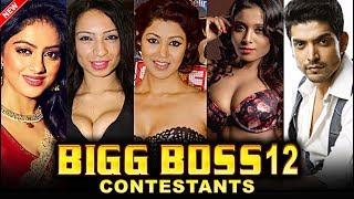 Bigg Boss 12: Bigg Boss Season 12 Contestants List Out 2018 - HUNAGAMA