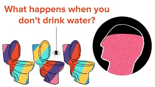 What Happens To Your Body If You Don't Drink Enough Water?
