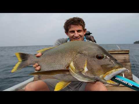 Solomon Island Fishing Trip