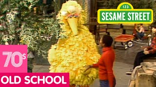 Sesame Street: Big Bird Loves His Street