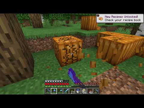 How To Get Pumpkins And Pumpkin Seeds Guide - Minecraft
