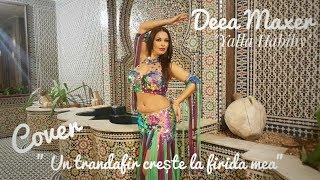 Gambar cover Deea Maxer -Yalla Habiby / Un trandafir creste la firida mea (cover) -in araba