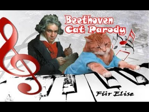 Beethoven - Für Elise Cats/Kucing Parody (Singing cats Version)