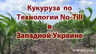 Кукуруза по Ноу-Тилл в Западной Украине. No-Till farming. [AGROTILL.in.ua]