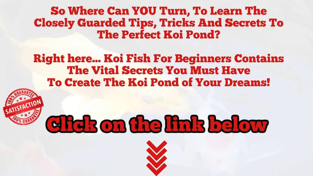 Koi pond pump size calculator youtube for Koi pond volume calculator