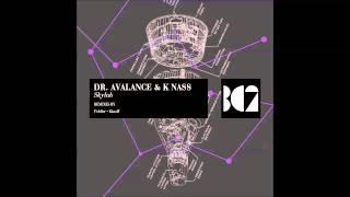Dr. Avalance & K Nass - Skylab (Fiddler Remix)