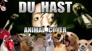 Baixar Rammstein - Du Hast (Animal Cover)