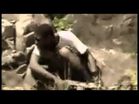 Papa Owura - Tomorrow