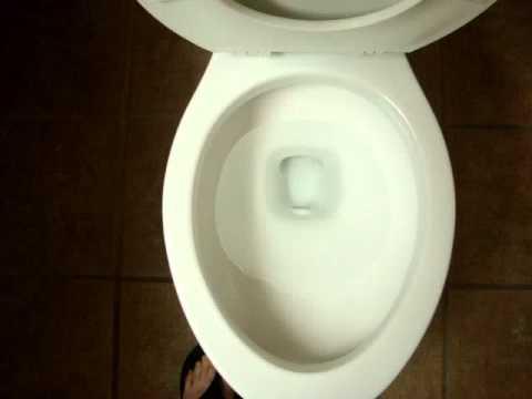 Crane Plumbing Toilet Seat