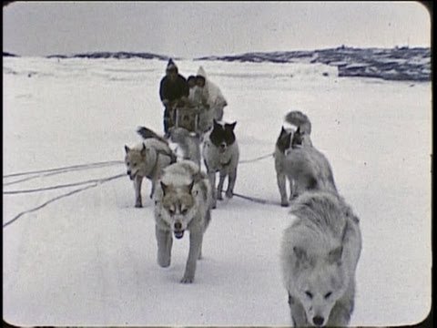 An Inuit/Eskimo family in the Arctic 1959 - YouTube