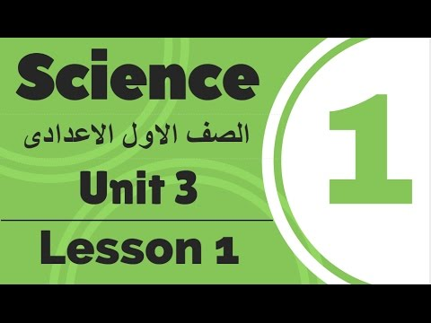 Science | Prep.1 | Unit 3 Lesson 1 | Celestial bodies