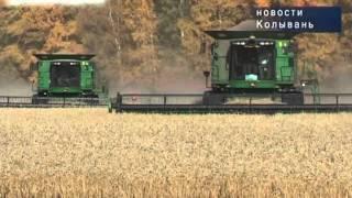 Рекордная урожайность