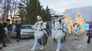 Медведи из Франции вышли в казанские парки развлекать горожан