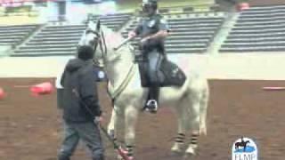 Lexington, Ky Mounted Police Procedures