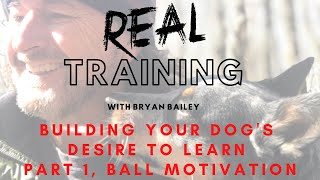 Building Your Dog's Desire To Learn  Part 1, Ball Motivation