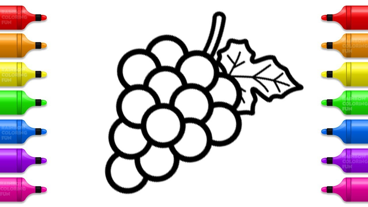 Grapes Drawing and Coloring | How to Draw Fruits for Baby