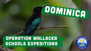 Operation Wallacea - Dominica Schools Expeditions