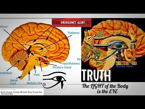 """The """"END"""" is the BEGINNING and the LIGHT has begun to SHINE! Secrets of The Pineal Gland"""