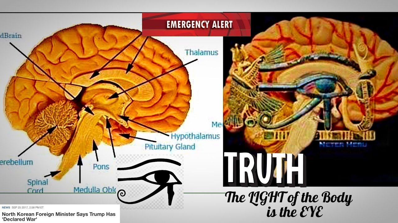 pineal gland eye of horus 34076 loadtve