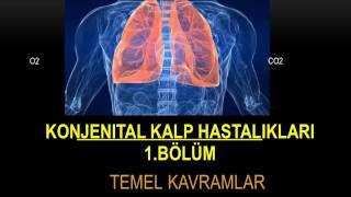 konjenital kalp hastalıkları I, temel kavramlar